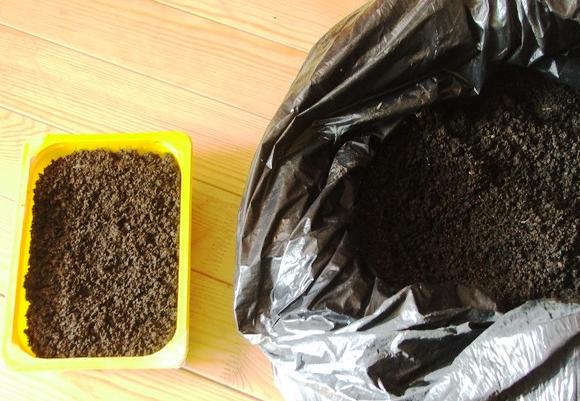 Подготовка емкости для рассады петунии