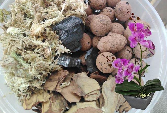 Традиционный состав субстрата для орхидей
